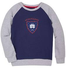 Bluza reglanowa przez głowę dla chłopca 3-8 lat C72C004_1