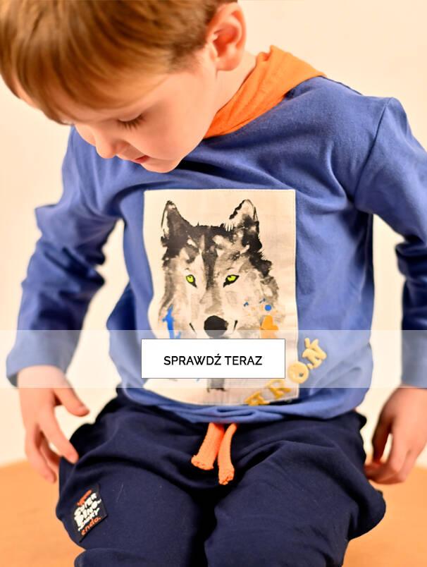 Baner z chłopcem w błękitnej koszulce z wilkiem.