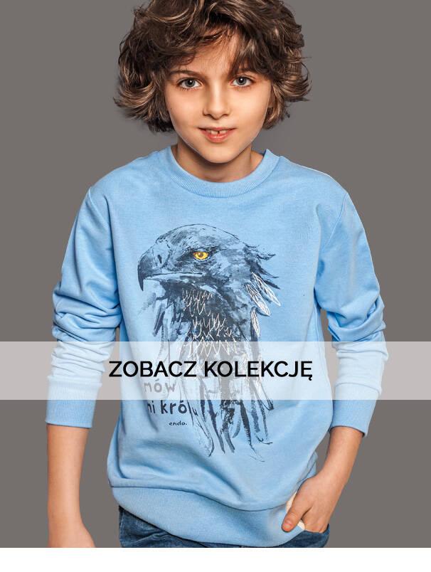 Baner z chłopcem w koszulce z dzikim ptakiem.