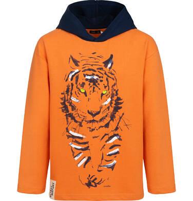 Bluza z kapturem dla chłopca, z tygrysem, pomarańczowa, 2-8 lat C05C013_1