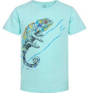 Endo - T-shirt z krótkim rękawem dla chłopca, z kameleonem, niebieski, 3-8 lat C06G105_1 132