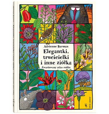 Endo - Elegantki, trucicielki i inne ziółka BK04041_1 110