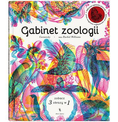Endo - Gabinet zoologii BK04046_1 36