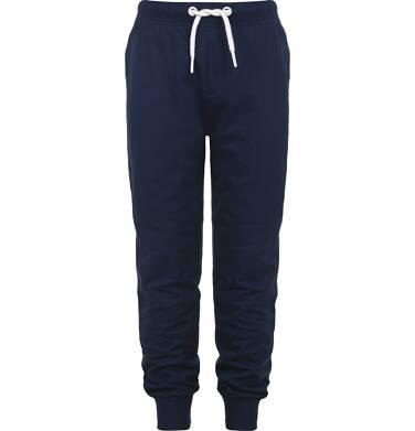 Endo - Spodnie dresowe dla chłopca 3-8 lat C82K003_1