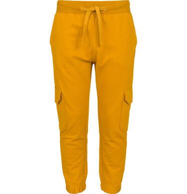 Endo - Spodnie dresowe dla chłopca, z bojówkowymi kieszeniami po bokach, musztardowe, 2-8 lat C03K024_2