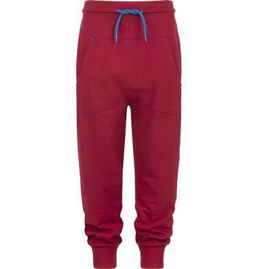 Endo - Spodnie dresowe dla chłopca 3-8 lat C82K033_2