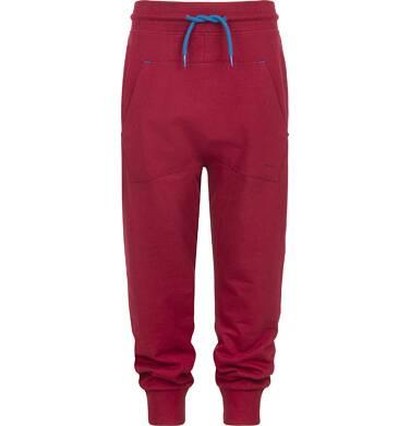 Endo - Spodnie dresowe dla chłopca 9-13 lat C82K533_2