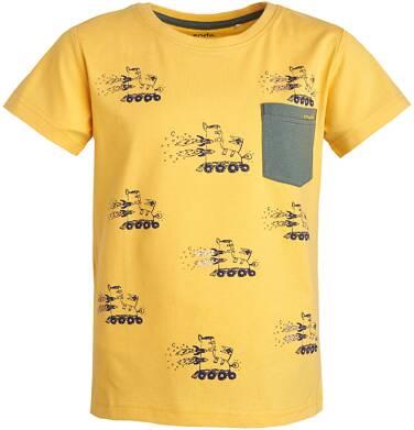 Endo - T-shirt dla chłopca 3-8 lat C81G053_1