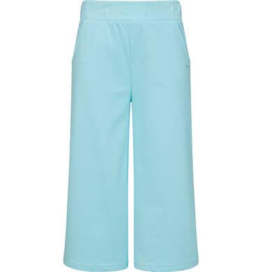 Endo - Spodnie dresowe kuloty dla dziewczynki, jasnoniebieskie, 2-8 lat D03K044_2