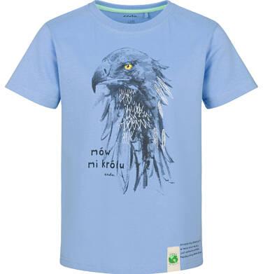 T-shirt z krótkim rękawem dla chłopca, z jastrzębiem, niebieski, 9-13 lat C03G597_1