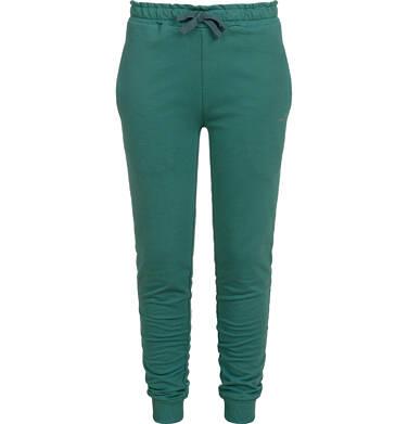 Endo - Spodnie dresowe dla dziewczynki, zielone, 9-13 lat D04K033_2,1