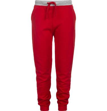 Endo - Spodnie dresowe dla chłopca 3-8 lat C82K001_3