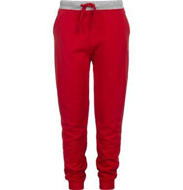 Endo - Spodnie dresowe dla chłopca 9-13 lat C82K501_3
