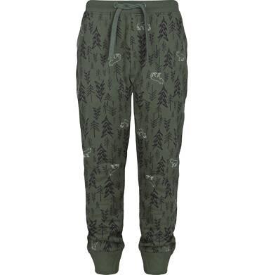 Endo - Spodnie dresowe dla chłopca 3-8 lat C82K013_1