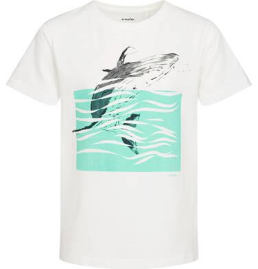 Endo - T-shirt z krótkim rękawem dla chłopca, z wielorybem, biały, 9-13 lat C05G049_1 23