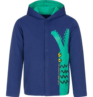 Endo - Bluza rozpinana z kapturem dla chłopca 3-8 lat C91C035_1