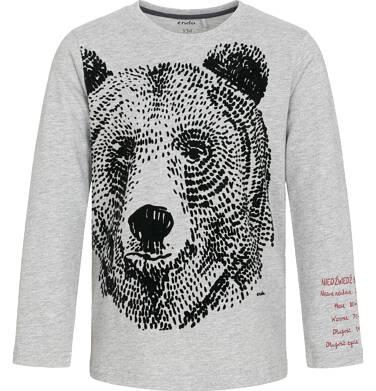 Endo - T-shirt z długim rękawem dla chłopca, z niedźwiedziem, szary, 9-13 lat C92G553_1