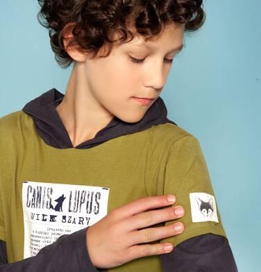 """Endo - """"Wilk szary"""" Bluza cienka z kapturem dla chłopca 3-8 lat C82G045_1"""