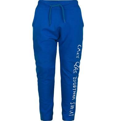 """Endo - """"Cały czas zdobywam świat"""" Spodnie dresowe dla chłopca 9-13 lat C82K523_2"""