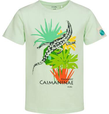 Endo - T-shirt z krótkim rękawem dla chłopca, z kajmanem, zielony, 2-8 lat C05G084_1 30