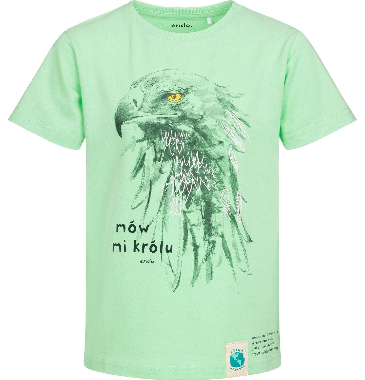 Endo - T-shirt z krótkim rękawem dla chłopca, z orłem, zielony, 9-13 lat C05G161_2