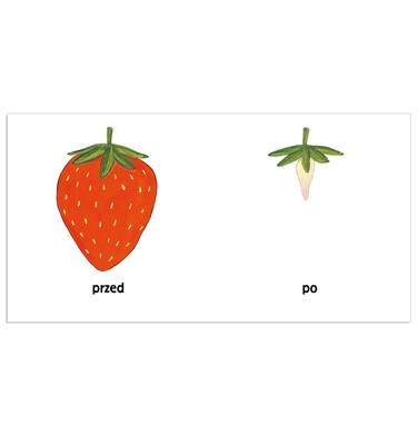 Endo - Pomelo i przeciwieństwa BK42009_1,2