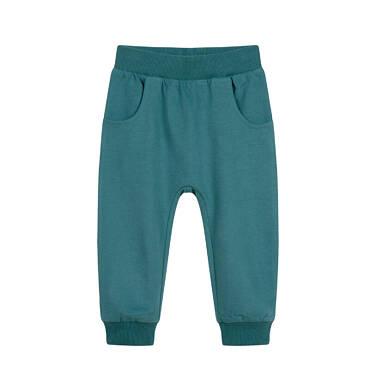 Endo - Spodnie dresowe dla dziecka do 2 lat, szare N04K019_2 18