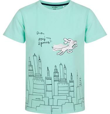 Endo - T-shirt z krótkim rękawem dla chłopca, z superbohaterem, miętowy, 2-8 lat C05G016_1 195