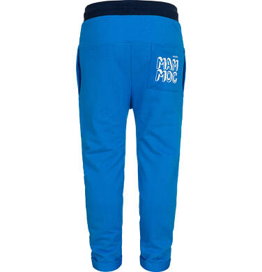 Endo - Spodnie dresowe dla chłopca, z obnizonym krokiem, niebieskie, 2-8 lat C05K026_1,2