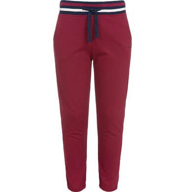 Endo - Spodnie dresowe dla chłopca, bordowe, 3-8 lat C92K006_3