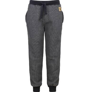 Endo - Spodnie dresowe dla chłopca 3-8 lat C82K017_1