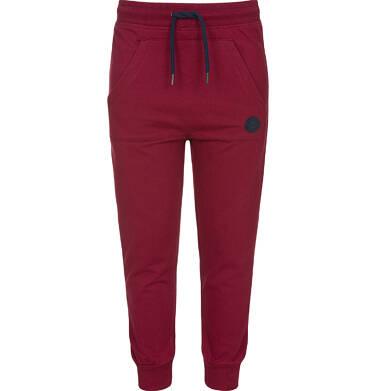 Endo - Spodnie dresowe dla chłopca 9-13 lat C92K507_1