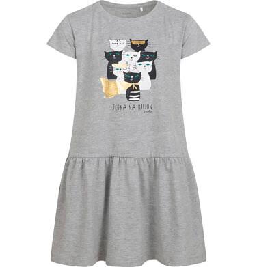 Sukienka z krótkim rękawem, z kotami, szara, 2-8 lat D05H022_1