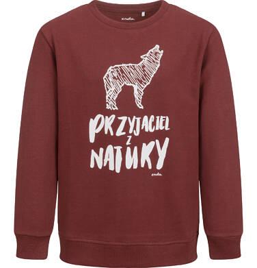 Bluza dla chłopca, z wilkiem, bordowa, 9-13 lat C04C006_1