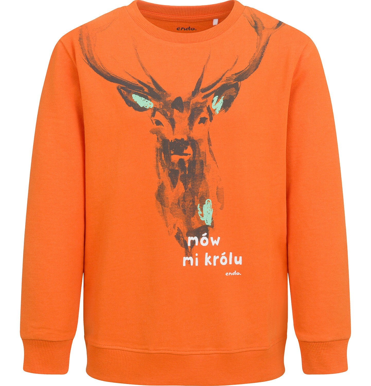 Endo - Bluza dla chłopca, z jeleniem, pomarańczowa, 9-13 lat C04C033_1