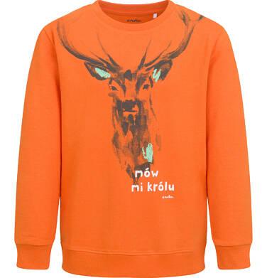 Endo - Bluza dla chłopca, z jeleniem, pomarańczowa, 9-13 lat C04C033_1 17