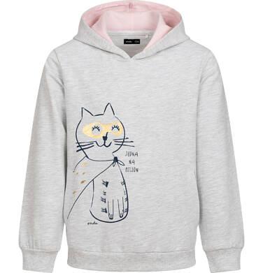 Bluza z kapturem dla dziewczynki, z kotem bohaterem, jasnoszary melanż, 9-13 lat D05C018_1