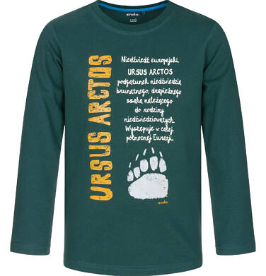 Endo - T-shirt z długim rękawem dla chłopca 9-13 lat C92G554_1