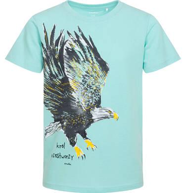 Endo - T-shirt z krótkim rękawem dla chłopca, z orłem, z napisem król przestworzy, turkusowy, 9-13 lat C06G082_2 92