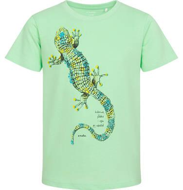 Endo - T-shirt z krótkim rękawem dla chłopca, z jaszczurką, zielony, 3-8 lat C06G099_2 28