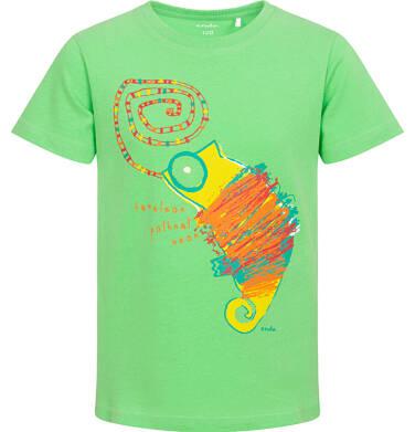Endo - T-shirt z krótkim rękawem dla chłopca, z kameleonem, zielony, 2-8 lat C06G117_1 35