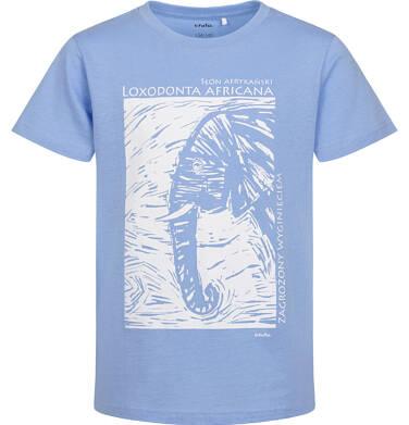 Endo - T-shirt z krótkim rękawem dla chłopca, ze słoniem, niebieski, 2-8 lat C05G186_1 25