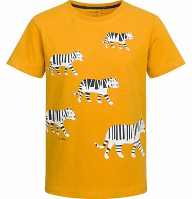 Endo - T-shirt z krótkim rękawem dla chłopca, z tygrysem, musztardowy, 9-13 lat C03G506_1