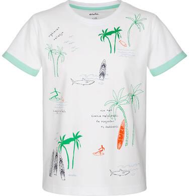 Endo - T-shirt z krótkim rękawem dla chłopca 9-13 lat C91G608_1