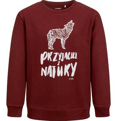 Endo - Bluza dla chłopca, z wilkiem, bordowa, 2-8 lat C04C055_1 8