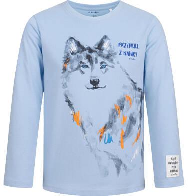 Endo - T-shirt z długim rękawem dla chlopca, z wilkiem, 2-8 lat C04G105_1 26