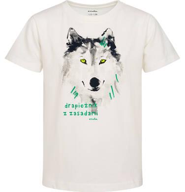 Endo - Piżama z krótkim rękawem, z wilkiem, kremowa, 9-13 lat C05V023_1,2