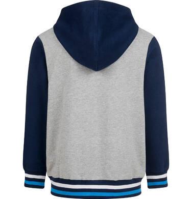 Endo - Bluza dla chłopca, z kapturem, rozpinana, szara, 9-13 lat C03C527_1,2