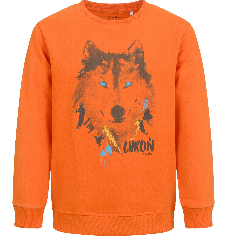 Endo - Bluza dla chłopca, z wilkiem, pomarańczowa, 2-8 lat C04C058_1