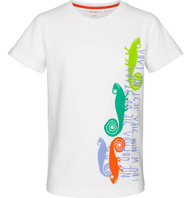 Endo - T-shirt z krótkim rękawem dla chłopca 9-13 lat C91G642_1